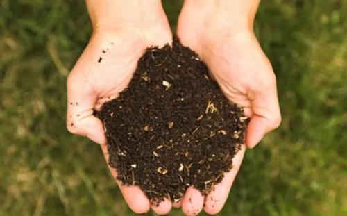 有强生物有机肥_有机肥厂家相关-武汉有强物业管理有限公司