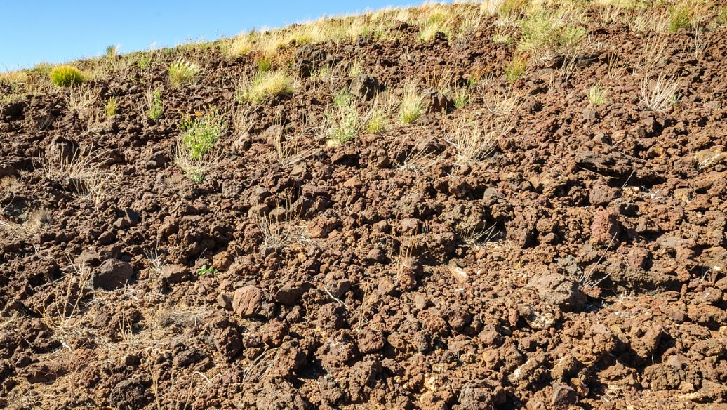 武汉泥炭土的营养_进口生物肥料是什么-武汉有强物业管理有限公司