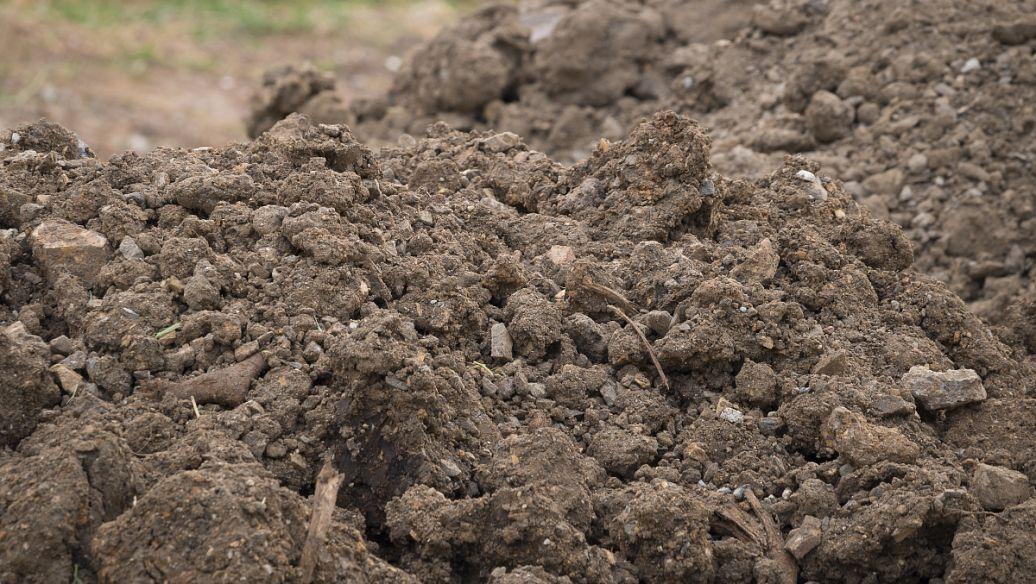 有强生物营养土价值 营养土 种菜相关